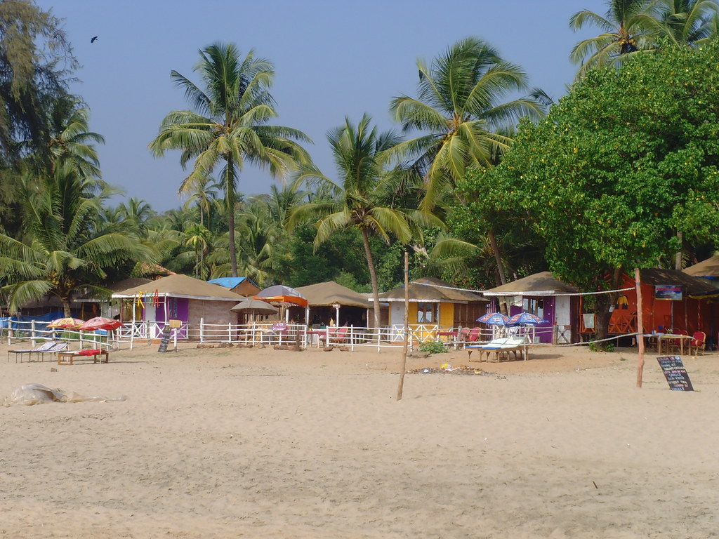 Image result for agonda beach