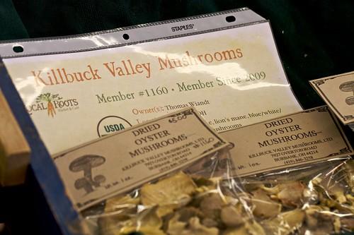 how to get mushrooms stardew valley
