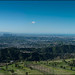 Green and Clear view of Los Angeles