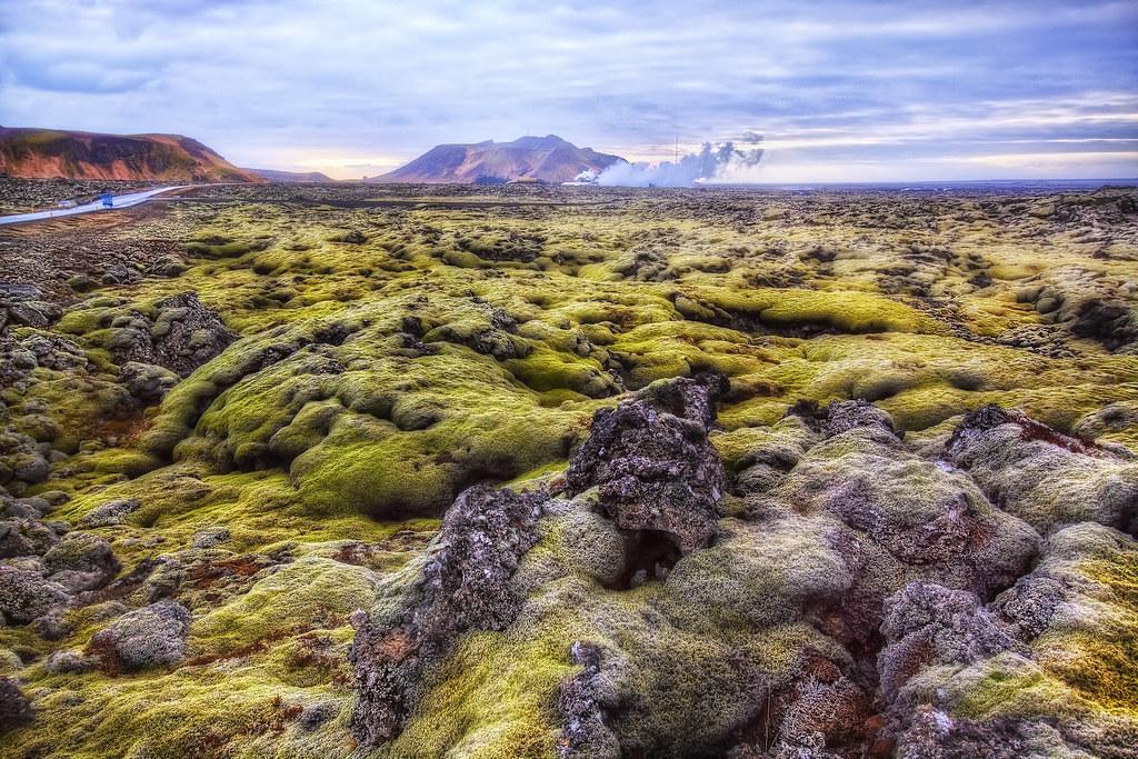 u0026 39 where the green moss grows u0026 39   lava field  grindavik  icela u2026