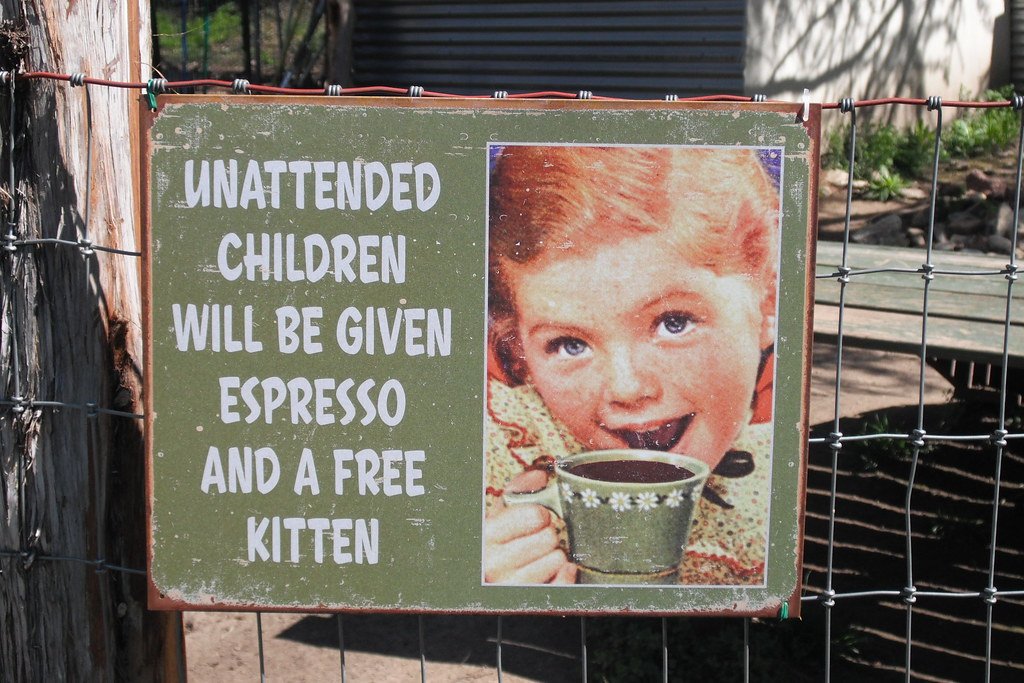 Unattended Children At The Natural Gardener Austin Tx Akhansen Flickr