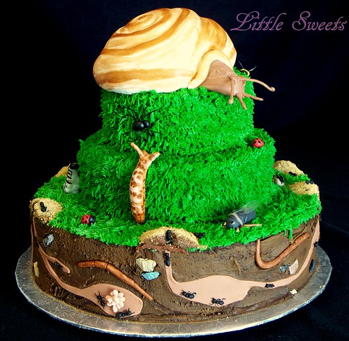 Snail Birthday Cake