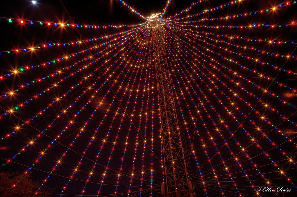 ... The Zilker Park Christmas Tree | by Ellen Yeates - The Zilker Park Christmas Tree Thank You So Much For Your €� Flickr