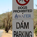 No dogs in this dam place