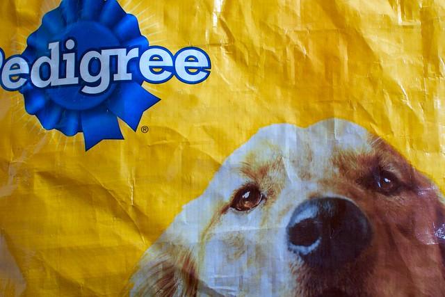 Pedigree Dog Food Commercial Washington