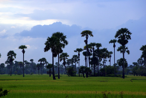 Southern Cambodia | by The Hungry Cyclist