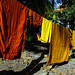 Drying Robes