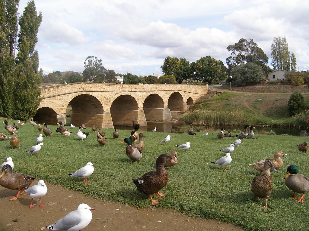 Richmond Bridge  Tasmania  Colonial Bridge In Richmond