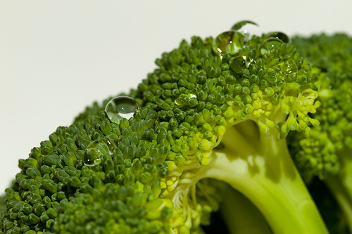 "Foto ""Take 2 on Broccoli"" by Darin House - flickr"