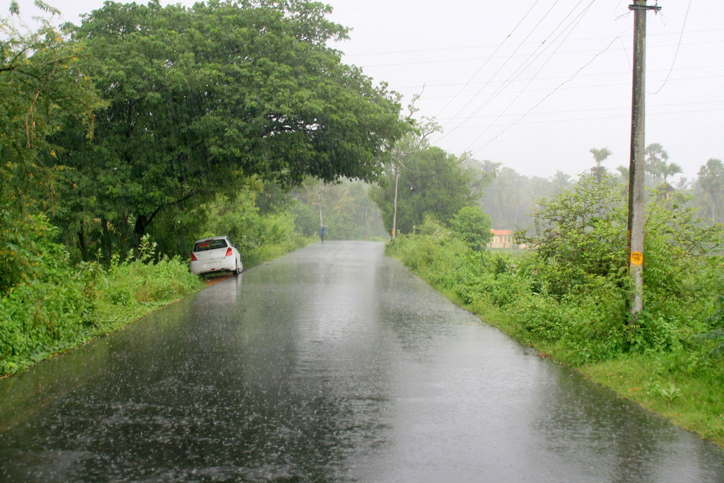 100 words essay on rainy season novel