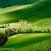 Toscana primavera ombre e luci