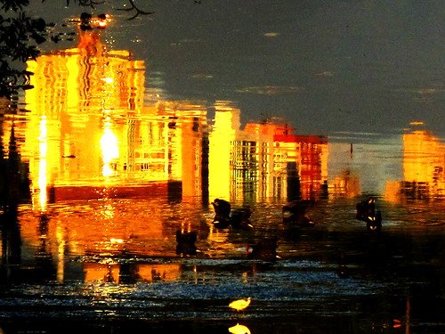 Water art: A golden sunset moment. | by peggyhr