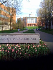 Flowers by the William T. Young Library | by University of Kentucky