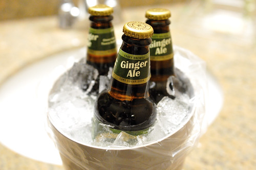 Ginger Ale | by Mike Saechang