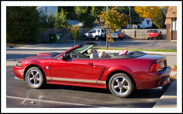 40th anniversary mustang flickr photo sharing. Black Bedroom Furniture Sets. Home Design Ideas
