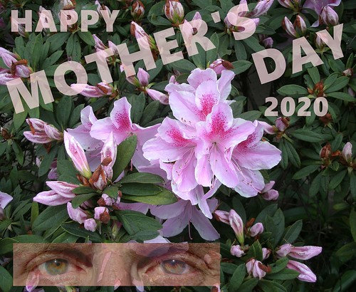 HAPPY MOTHER'S DAY 2020 LOTS OF PINK FLOWERS 3-17 5-12-201 ...