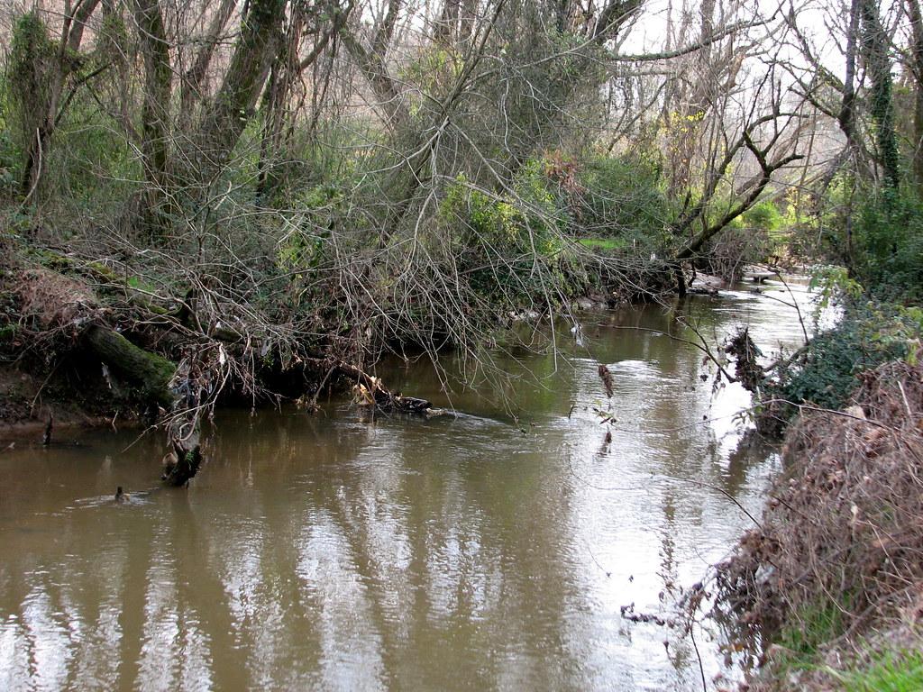 Swingers in walnut creek nc