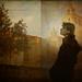 L'art d'observar / The art of observing