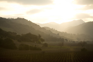 Napa Valley | by lech2a
