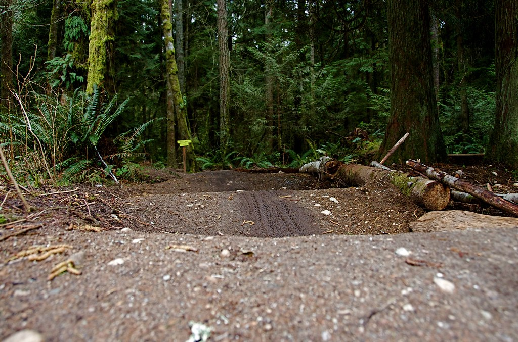 hill mountain bike park king county parks your big backyard flickr