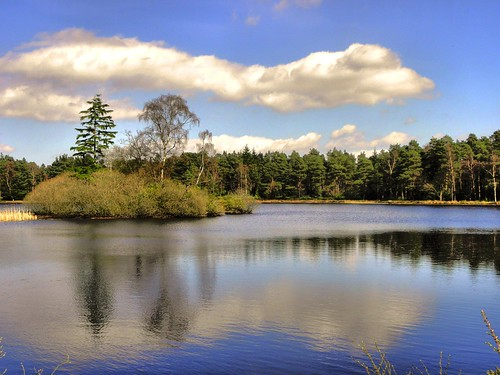 Cragside North lake | by jimsumo999