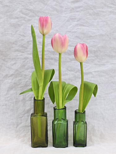 Three Pink Tulips in Green Bottles | by Of Spring and Summer