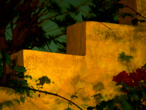 Garden Wall Medium Velvia 50 | by Doha Sam