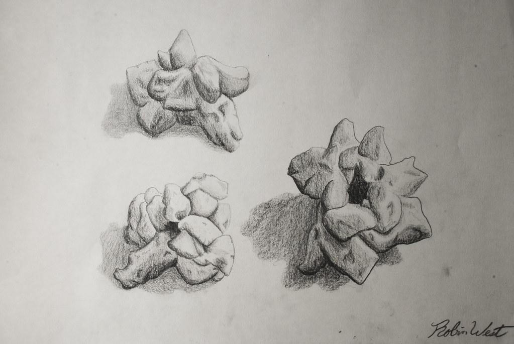 Value In Visual Arts : Popcorn tone and value drawing robin west flickr