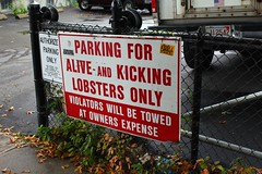"""Parking for alive and kicking lobsters only"""