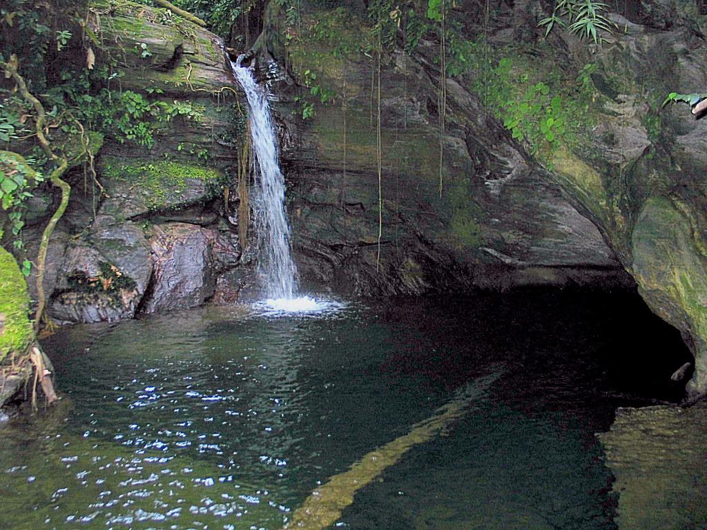 Paria Waterfall in Trinidad, Trinidad and Tobago   Sygic ...  Trinidad And Tobago Maracas Falls