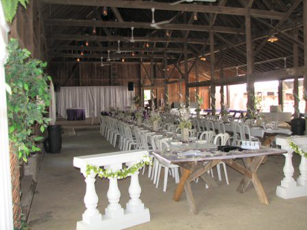Banquet Style Seating For Wedding Reception Picnic