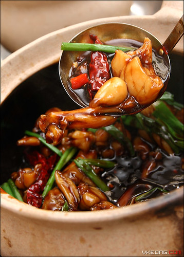 claypot-frogs-legs | by vkeong