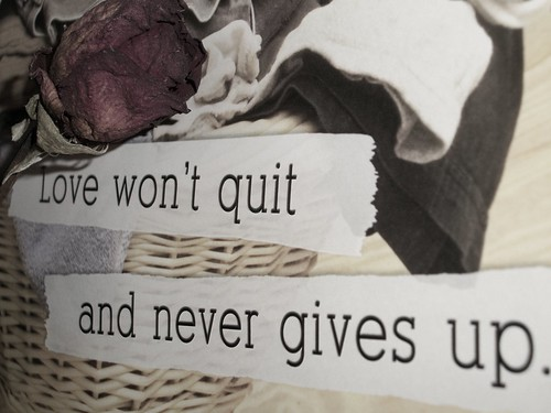 No quit, no give up. | by Tatiana P.