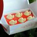 Kobato (little dove) chocolate in box