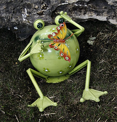 Froggy by Helen Indy
