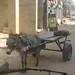 donkey and buggy