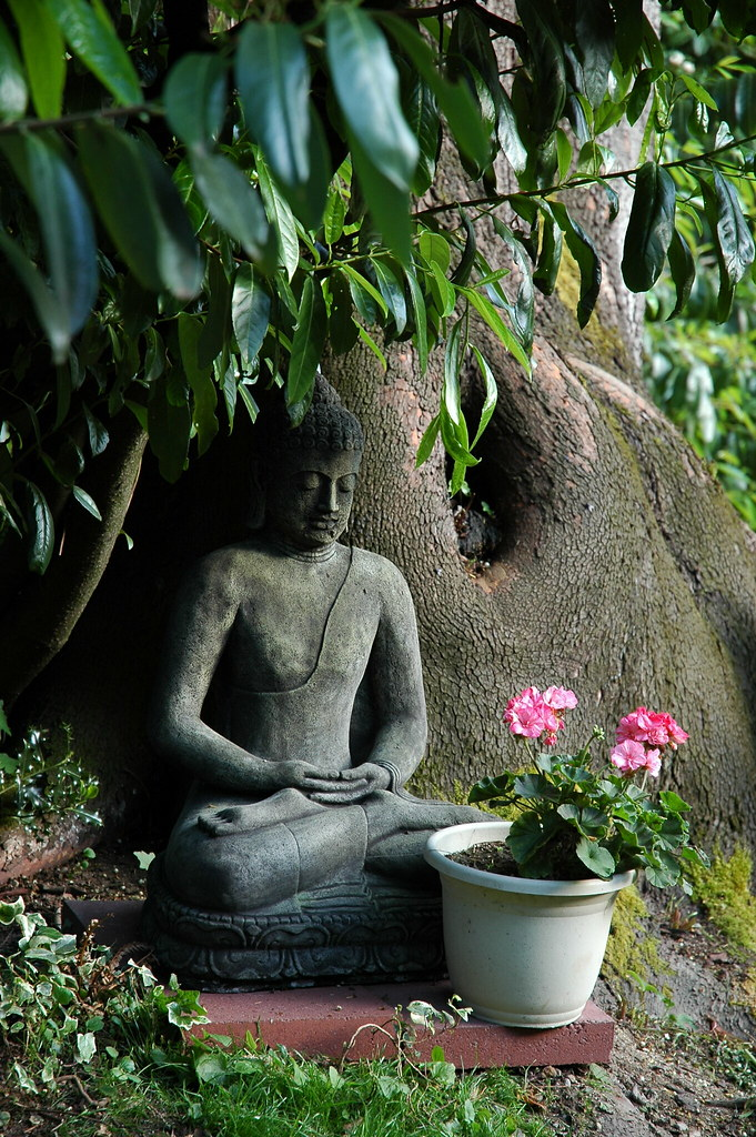 Garden Buddha Statue Pink Flowers Meditation Position U Flickr