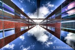 Symmetry? [Explored] by Sasja Milenkovic