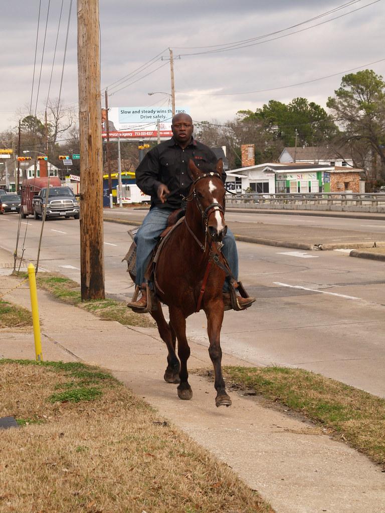 Houston Texas Martin Luther King Jr trail ride Parade Janu ...