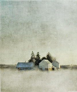 I will always be an oasis | by jamie heiden