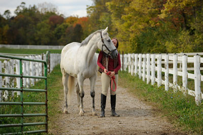 Amazing College Equestrian Center Earldom