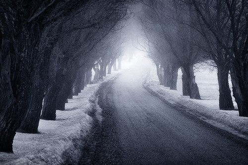 The Way | by Mikko Lagerstedt