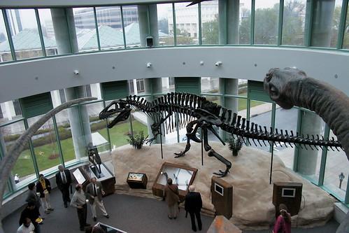 South Carolina Museum Of Natural Sciences