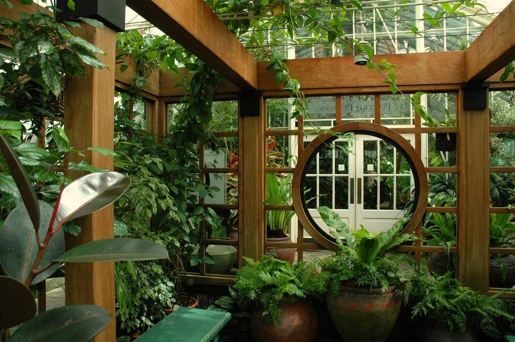 Оранжерея в частном доме своими руками 43