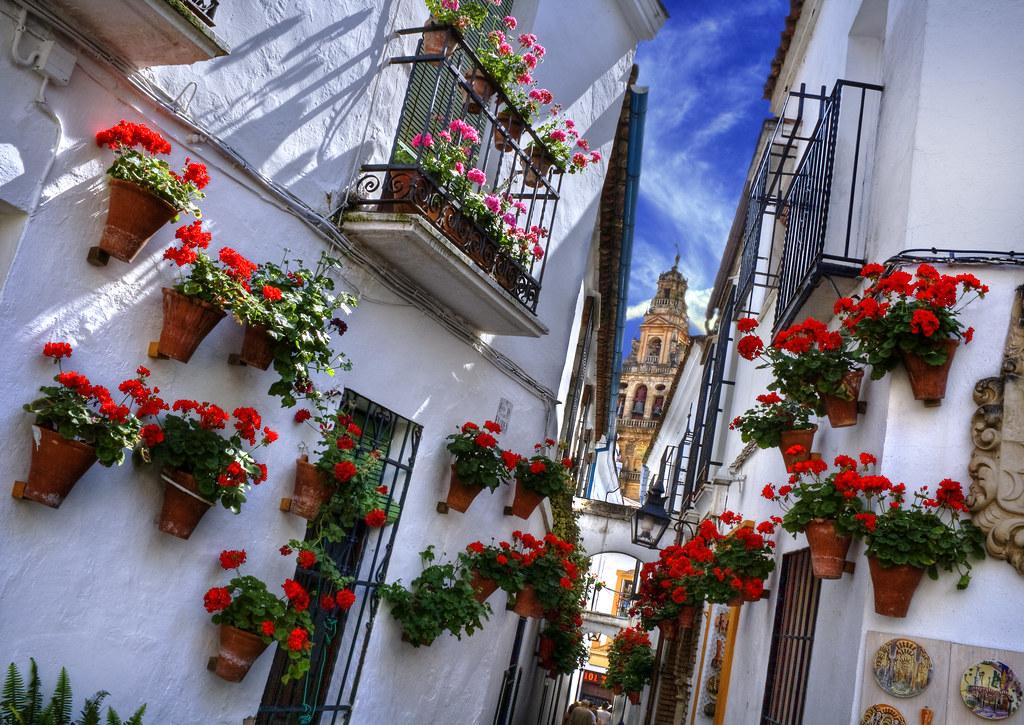 Flowers street c rdoba spain view on black mayo es el - Inmobiliarias en cordoba espana ...