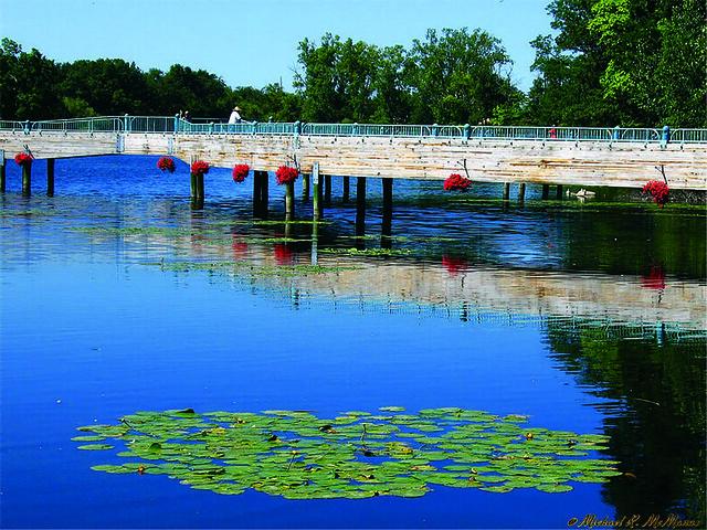 Brighton Michigan Millpond Flickr Photo Sharing