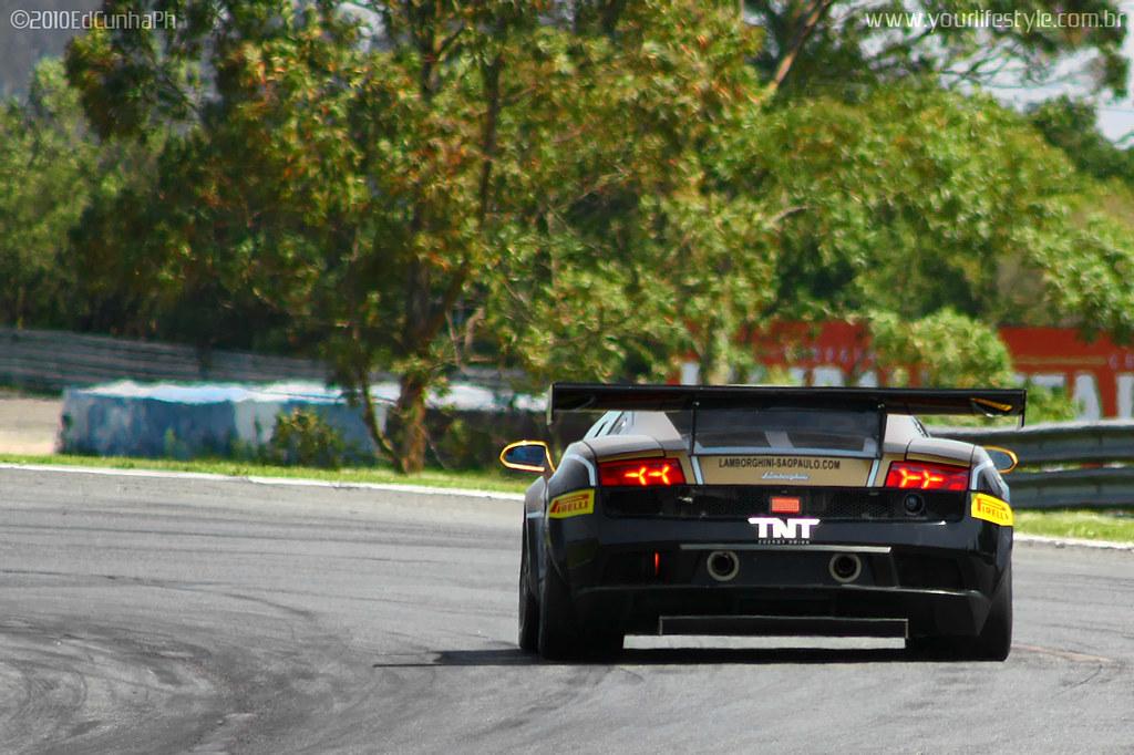 ... Lamborghini Gallardo LP560 GT3 #19 | By Ed Cunha Ph