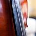 cello pr0n