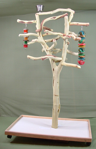 Manzanita Parrot Tree Stand Bird Perch Play Gym Toy Flickr