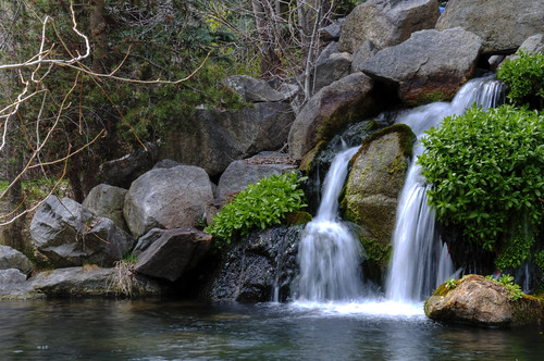 MK Nature Center Water Fall | by Nikon Junkie